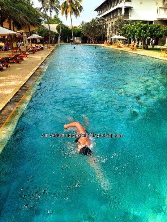 Monika Kalbacher, schwimmen, Pool, Sri Lanka