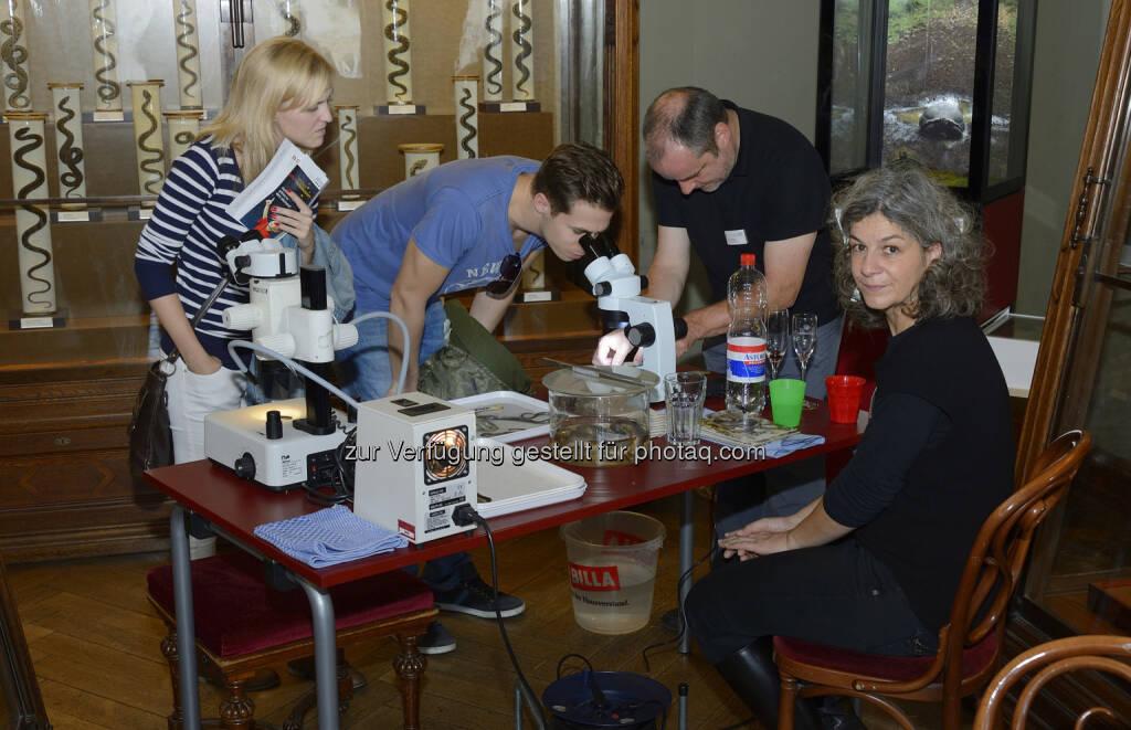 Naturhistorisches Museum: Citizen Science Day am 4. März 2017 im NHM Wien (Fotocredit: NHM Wien, Kurt Kracher) (23.02.2017)