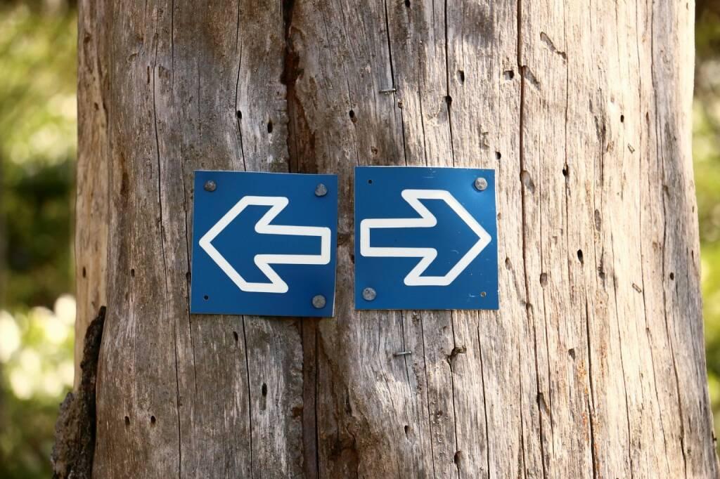 Links, Rechts, Entscheidung, Wahl (Bild: Pixabay/683440 https://pixabay.com/de/baum-stamm-wald-pfeile-brown-746617/ ) (19.05.2017)