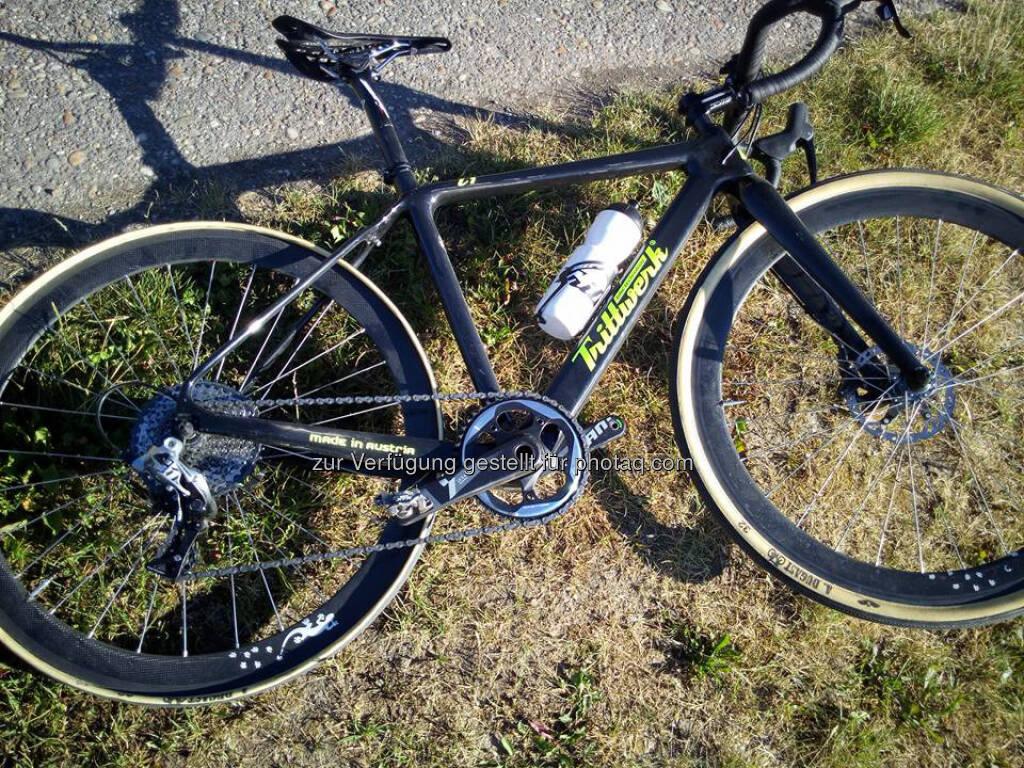Fahrrad, Trittwerk (19.06.2017)