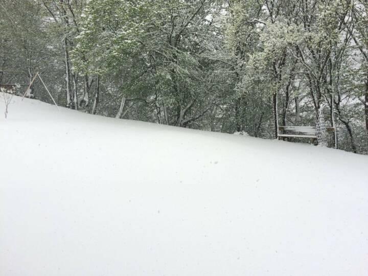 Schnee, weiß, Winter
