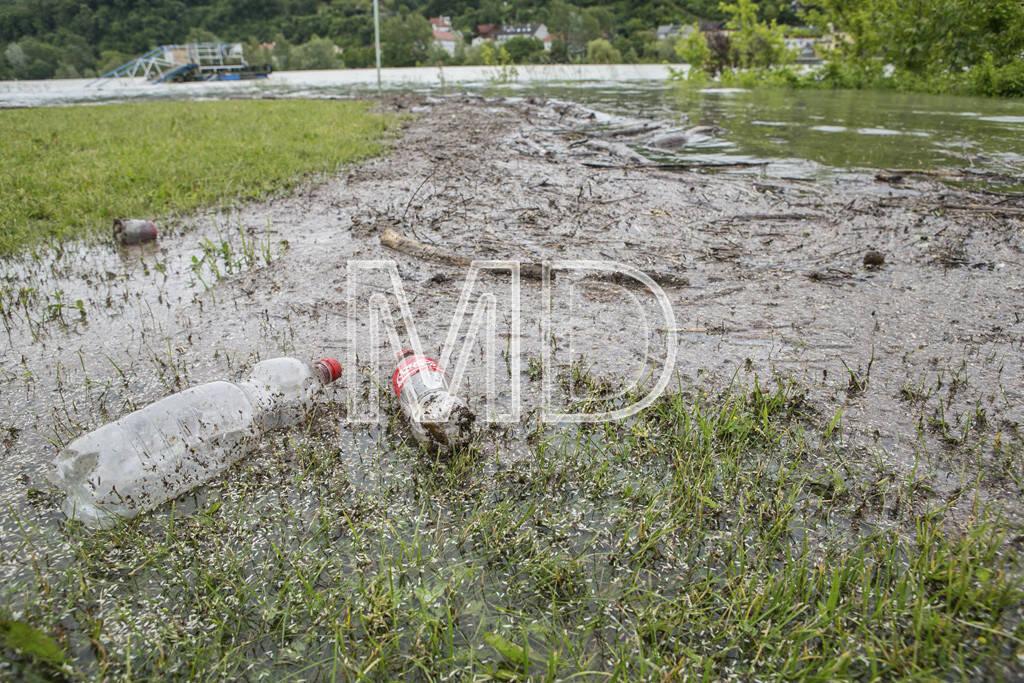 Hochwasser, Greifenstein, Coca-Cola Flaschen, © Martina Draper (03.06.2013)