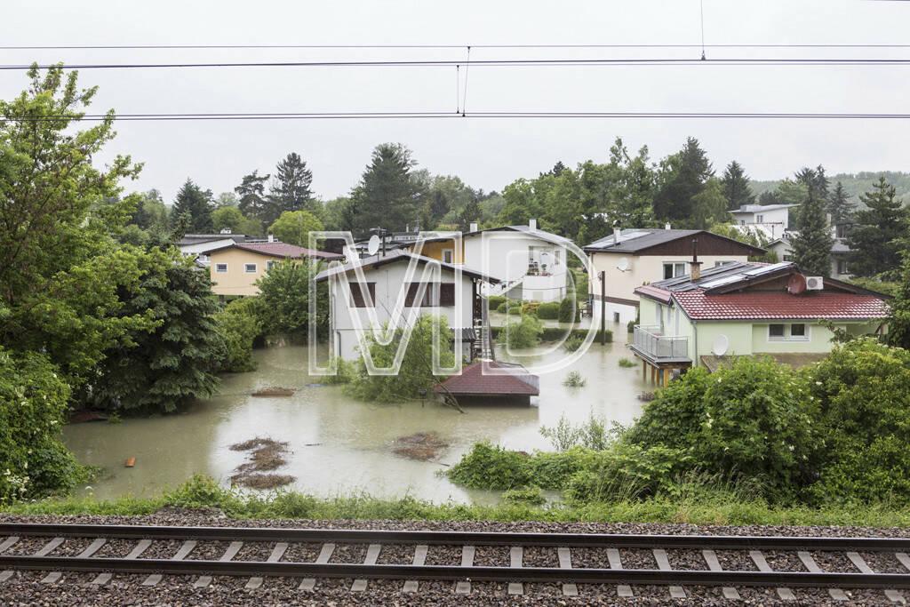 Hochwasser, Greifenstein, Badesiedlung, © Martina Draper (03.06.2013)