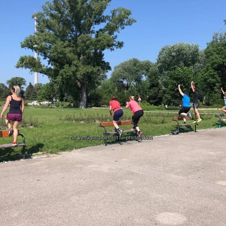 Bootcamp by Beatrice Drach