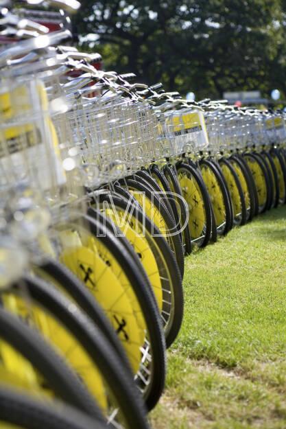 Fahrräder Raiffeisen, © www.martina-draper.at (08.07.2013)
