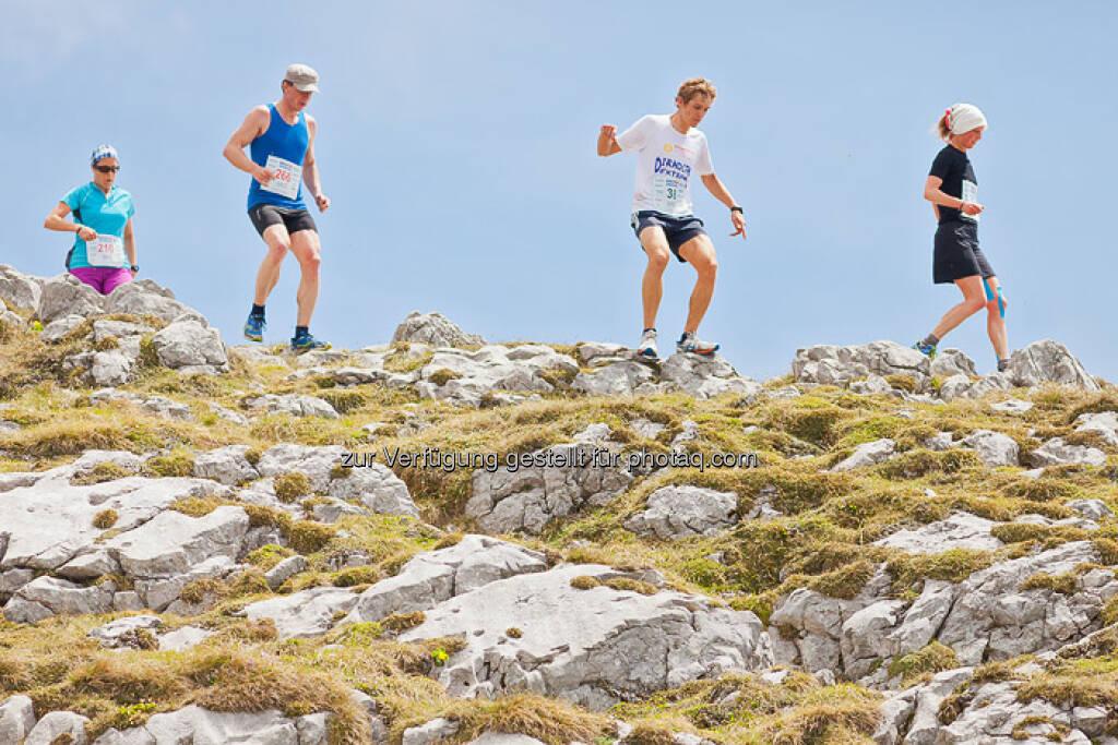Laufen, Berg, ESPA-Ötscher-Marathon 2013 , © Rainer Mirau (27.07.2013)