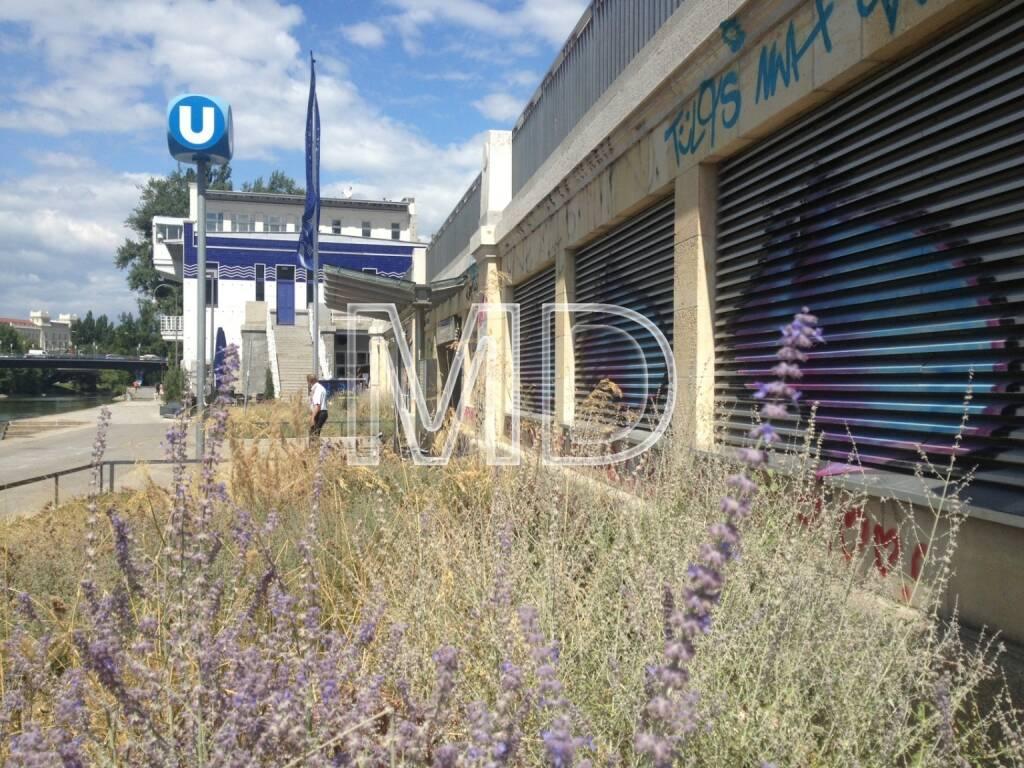U-Bahnstation Schottenring, © www.martina-draper.at (31.07.2013)