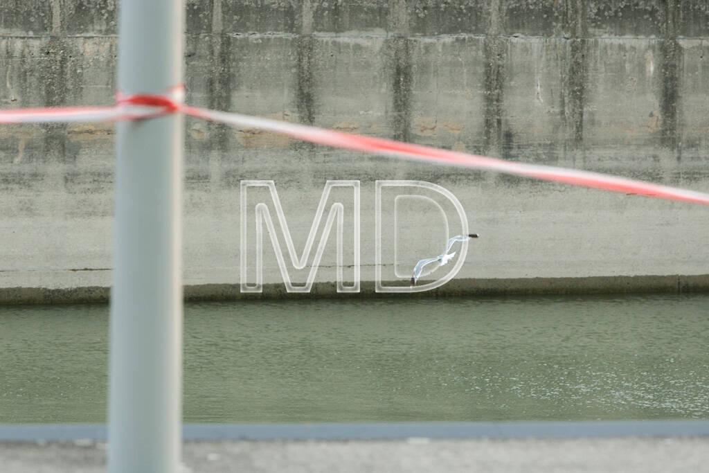 Möwe, Absperrung, © www.martina-draper.at (09.08.2013)