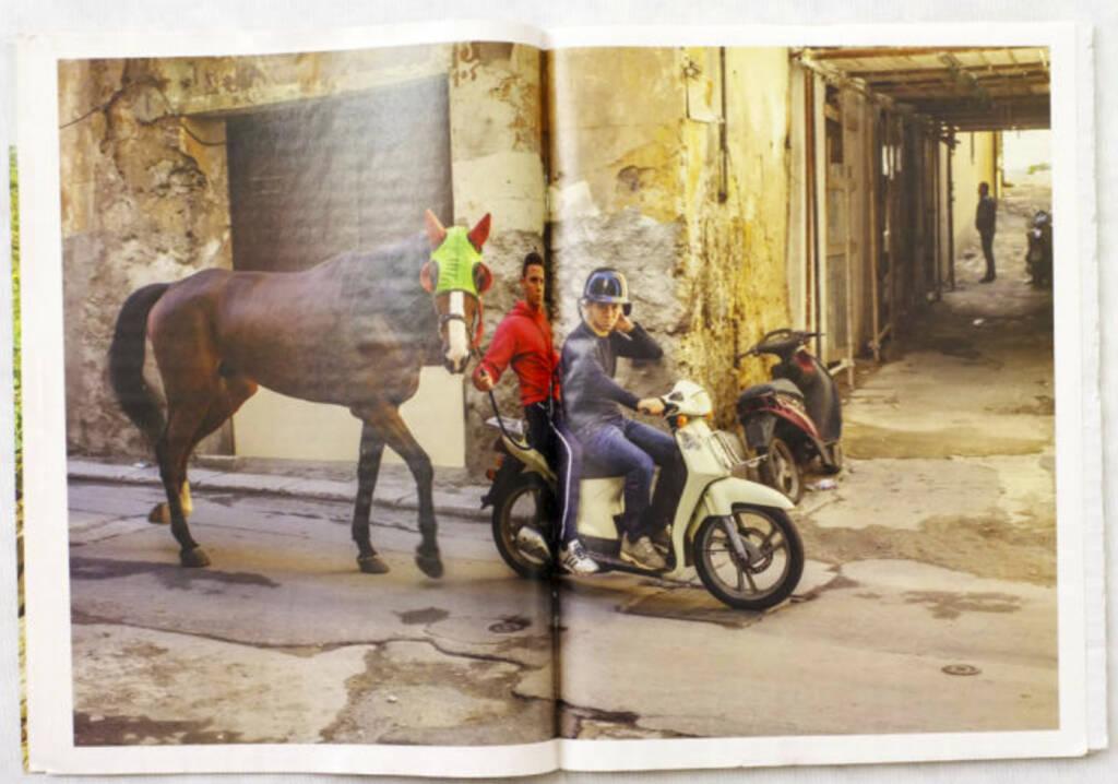 Pferd, Scooter, Italien 2010, The Pigs, (c) Carlos Spottorno (Phree und RM Verlag) (19.08.2013)