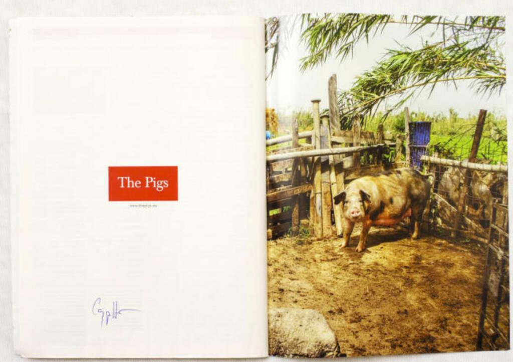 Schwein, The Pigs, (c) Carlos Spottorno (Phree und RM Verlag) (19.08.2013)