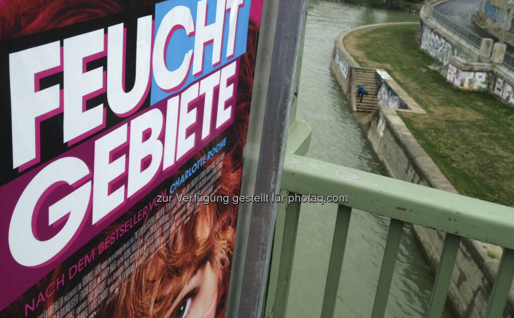 Feucht Gebiete, Donaukanal, Wasser (28.08.2013)